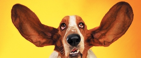 5 Techniques to Avoid the Dreaded Happy Ears Syndrome