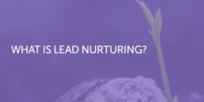 What Is Lead Nurturing?