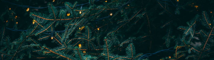 Top 4 Takeaways from the MuteSix + Pattern89 Holiday Prep Webinar